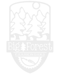 BF-Logo-Web